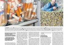 2015_01_03_Diario_de_Ibiza-2