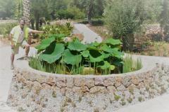 jardi-botanic-soller-projecte-jardineria-1