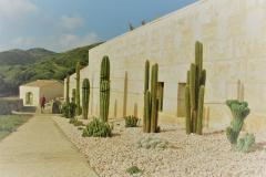 jardi-botanic-soller-projecte-jardineria-3